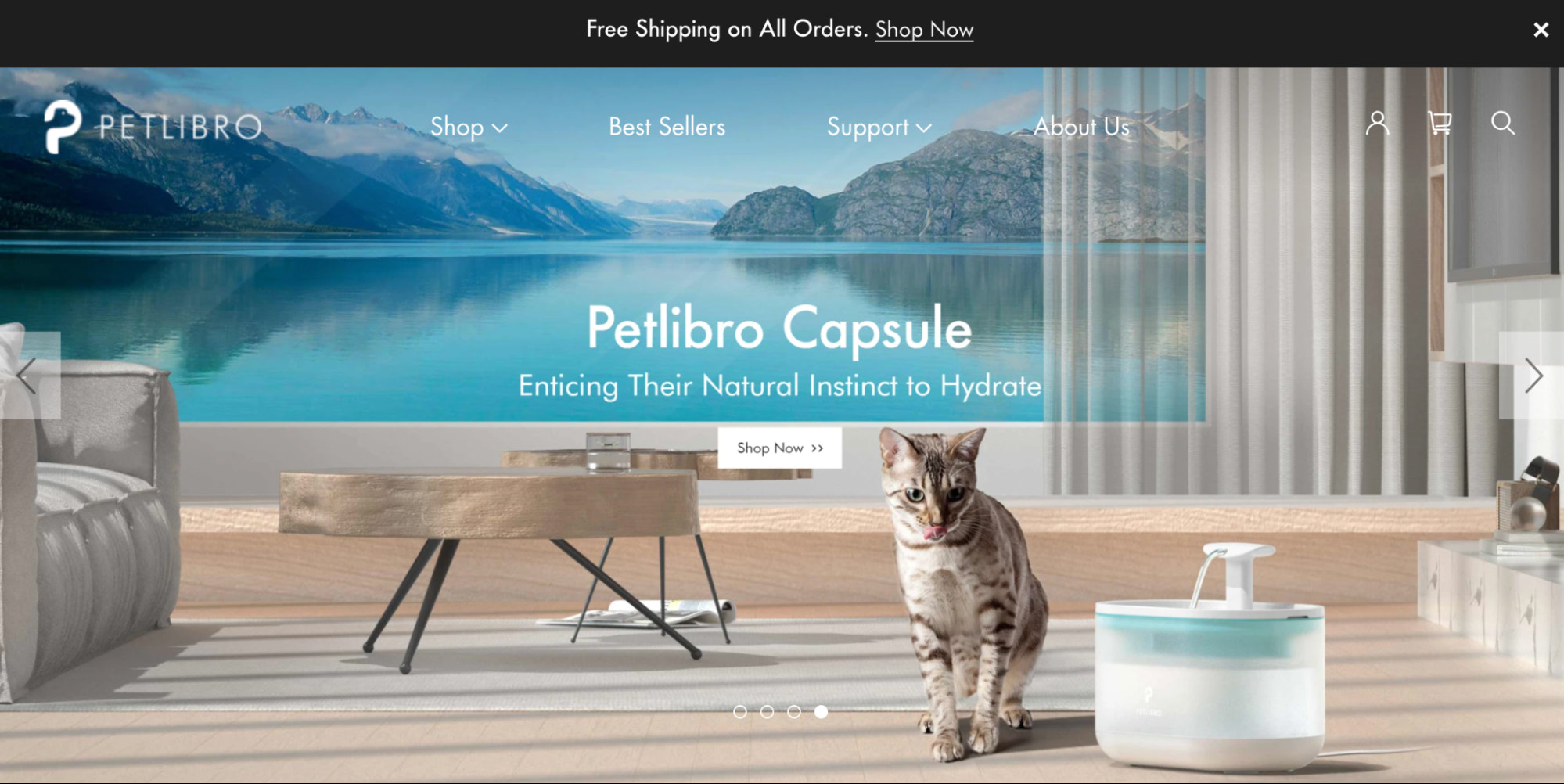 petrlibro pet products business example