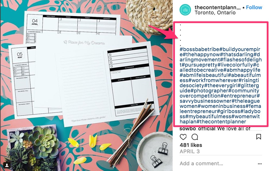 Instagram Marketing The Definitive Guide For Beginners
