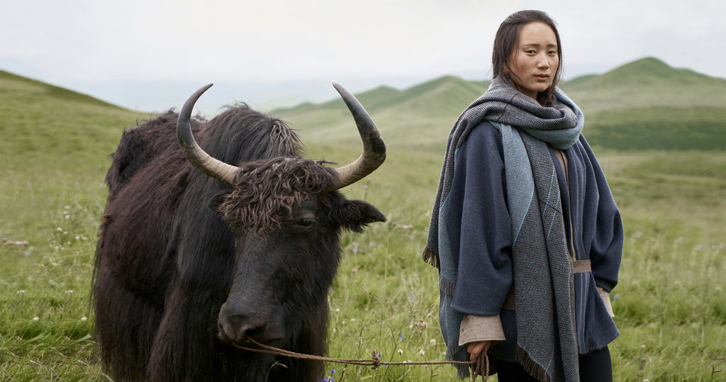 One of Norlha Textiles' artisans, in a blue wool jacket and black pants, poses with an oversized blue scarf next to a yak on the plateau.