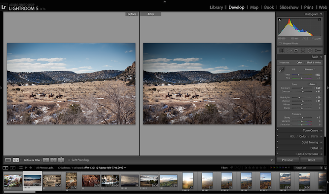 2. Photoshop Lightroom