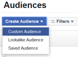 Screenshot of creating a Website Custom Audience in Facebook