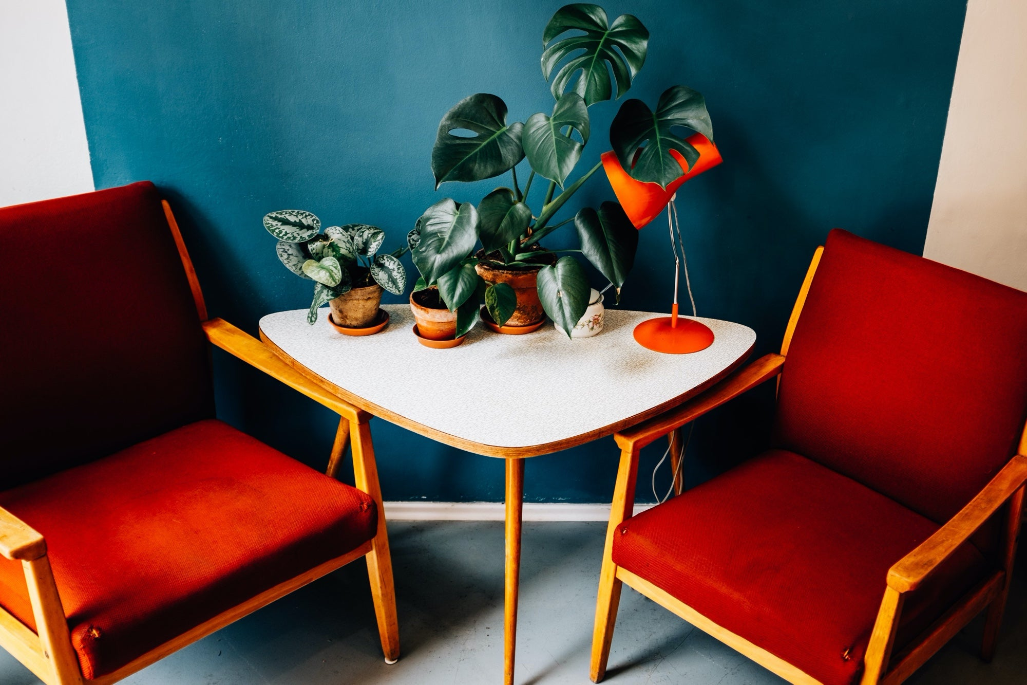 Two red chairs flank a table covered in plants