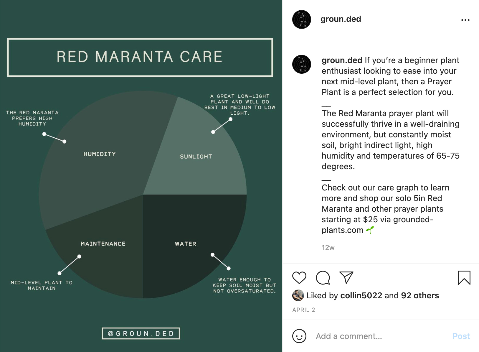 Screenshot of a Grounded Instagram post that outlines plant care