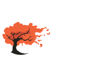 The Tapestry Galaxy