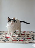 Light pink rug with red and light blue crosses sitting on the floor in a white space with a cat walking on top staring at the camera