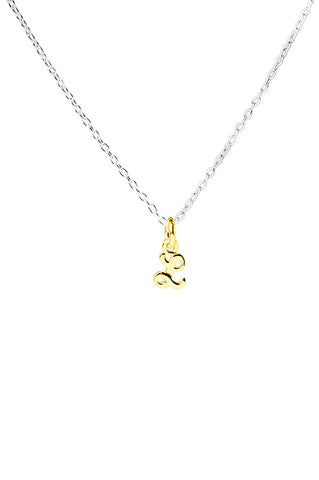 Gold Script Initial Delicate Necklace