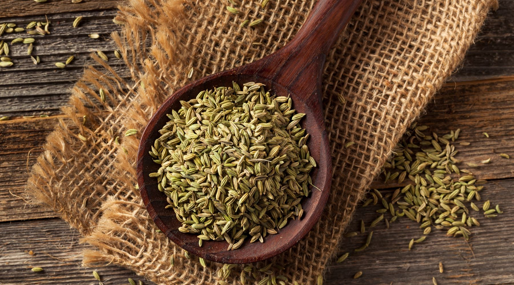 Fennel Tea: Benefits, Side Effects and How to Make it
