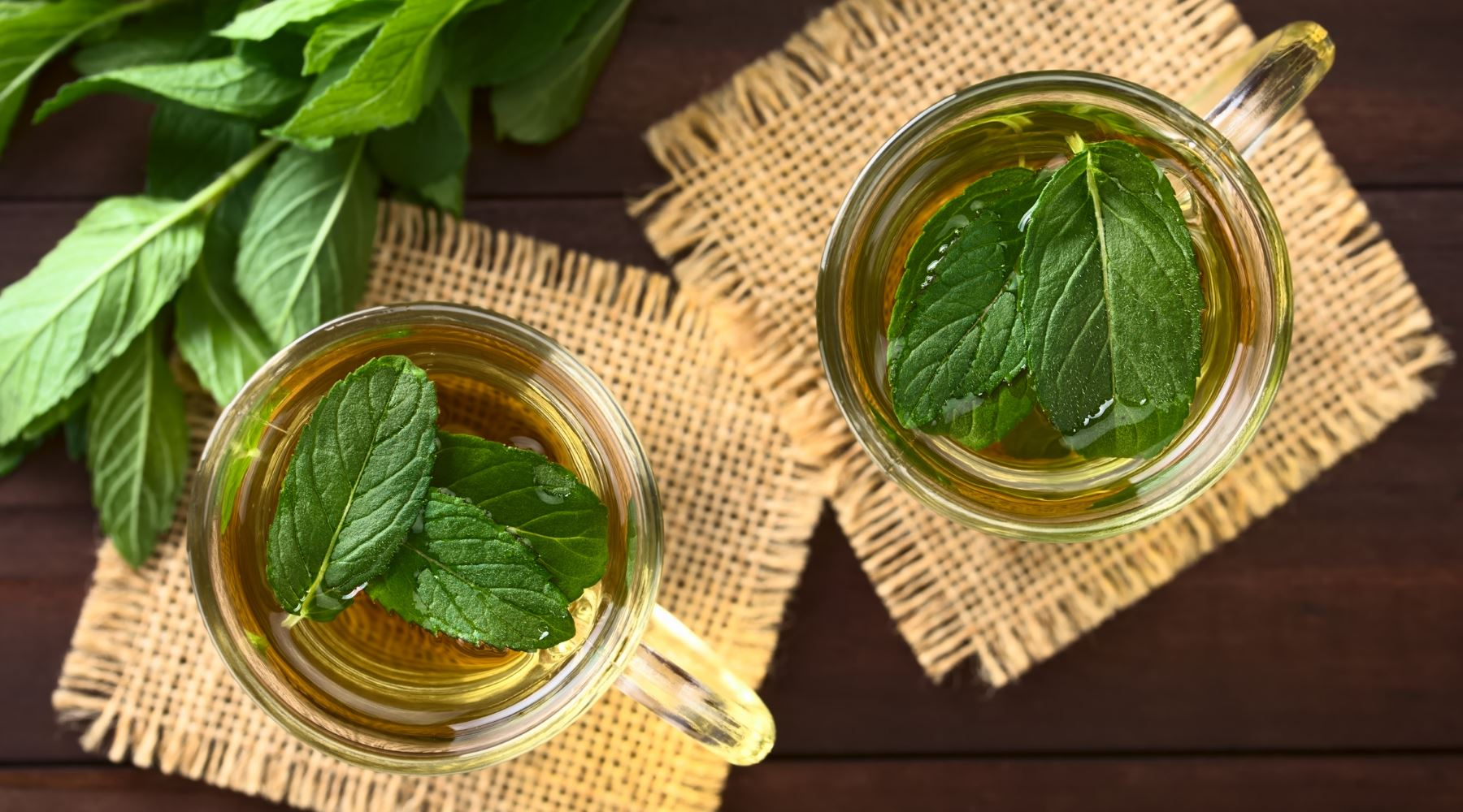 8 Science-backed Mint Tea Health Benefits