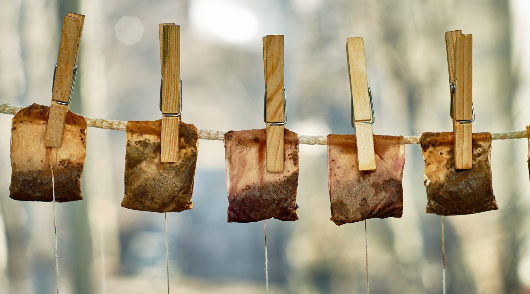 20 Ingenious Ways to Use Old Tea Bags