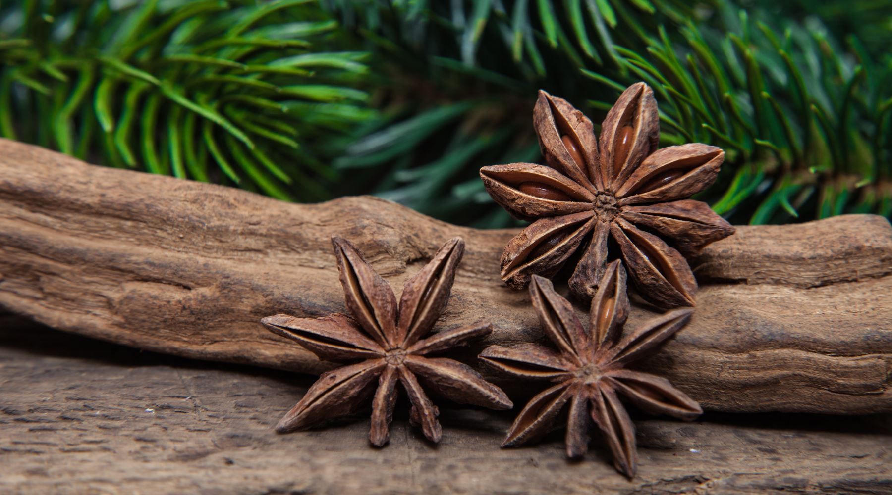 All about Star Anise Tea. Health Benefits Side Effects