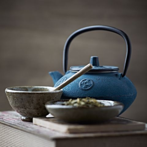 Everything About The Japanase Cast Iron Teapots (Tetsubin)