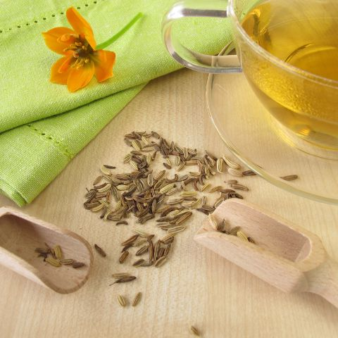 Fennel Tea cup benefits