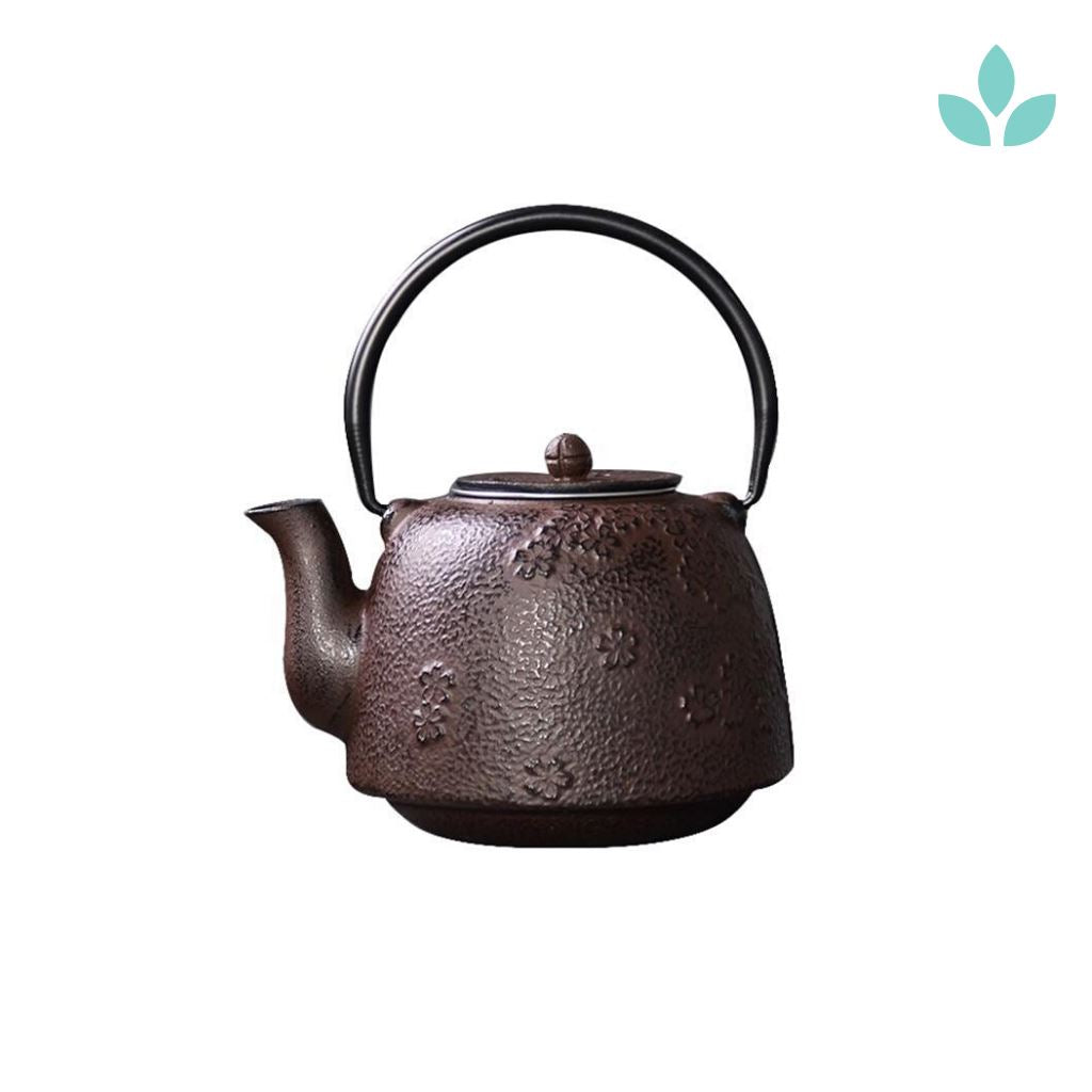 Large Cast Iron Teapot