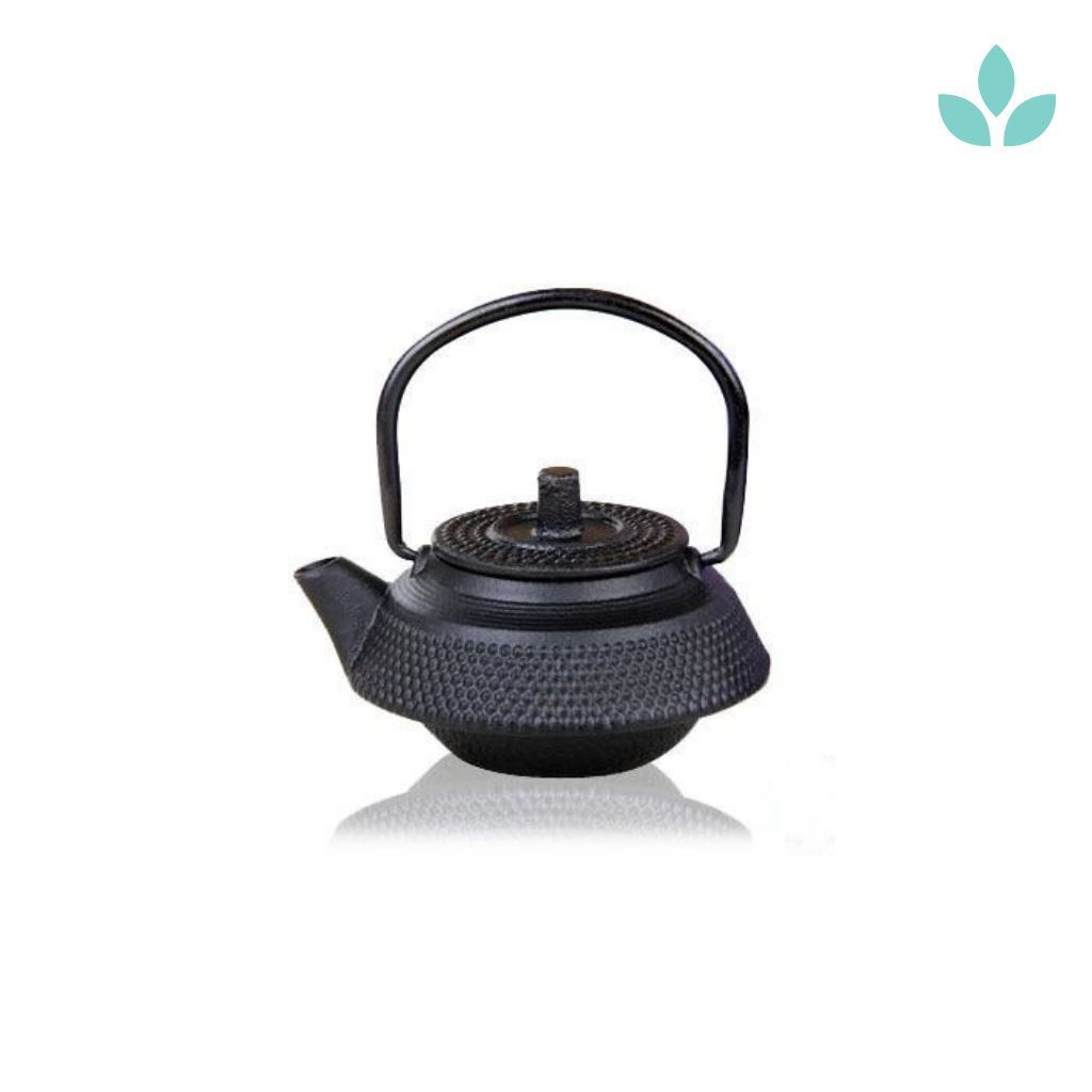 Cast Iron Teapot With Infuser