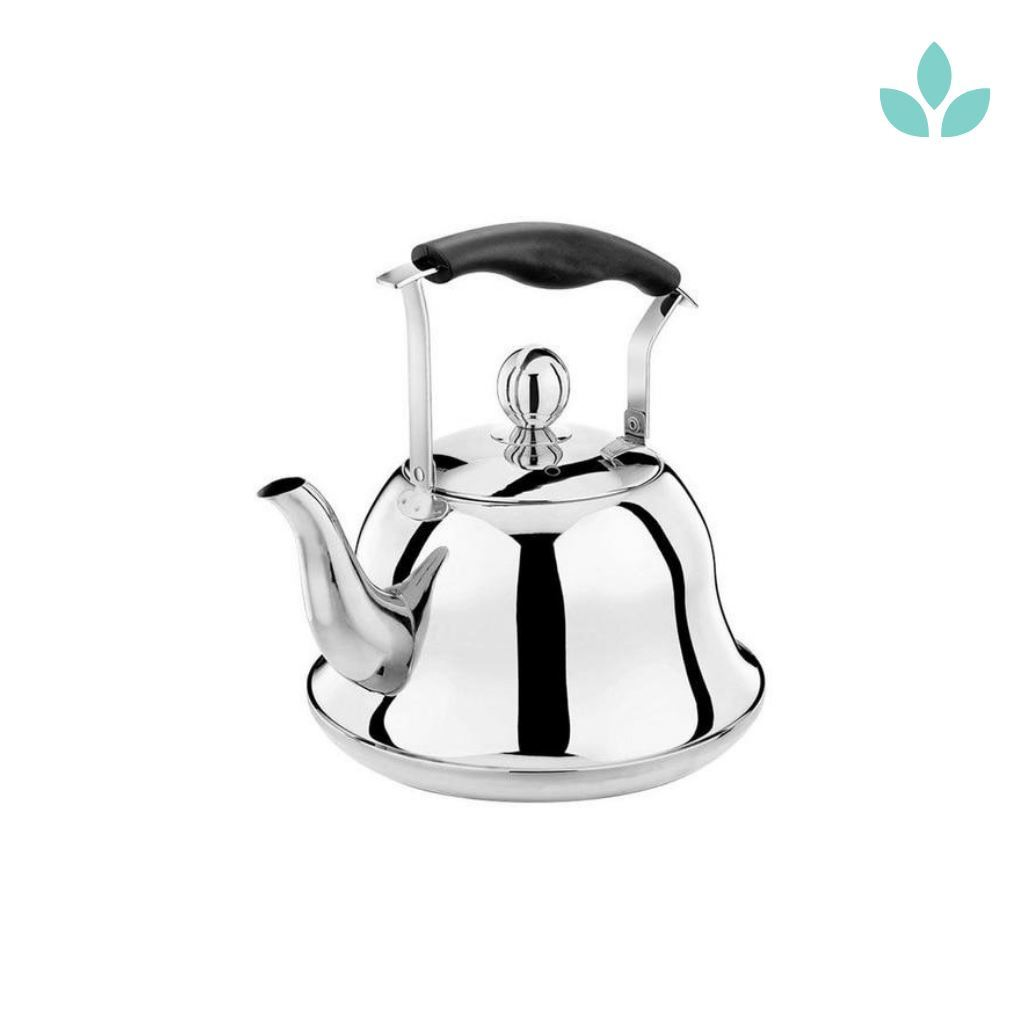 Silver Stainless Steel Kettle With Infuser Teapot