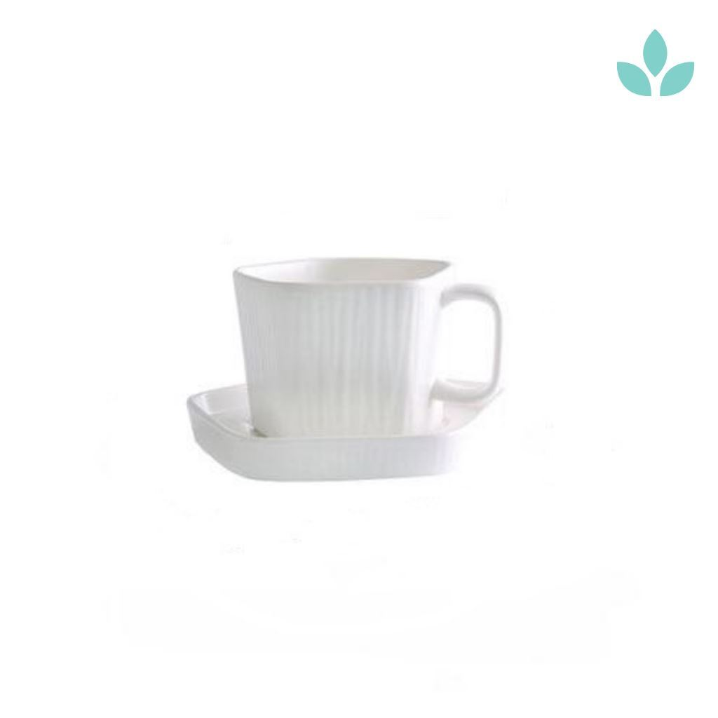 Simple Nordic Elegant White Ceramic Cup With Saucer