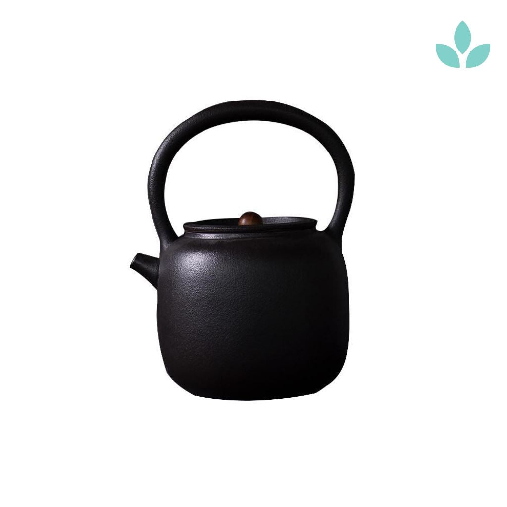 Top-handle Japanese Teapot