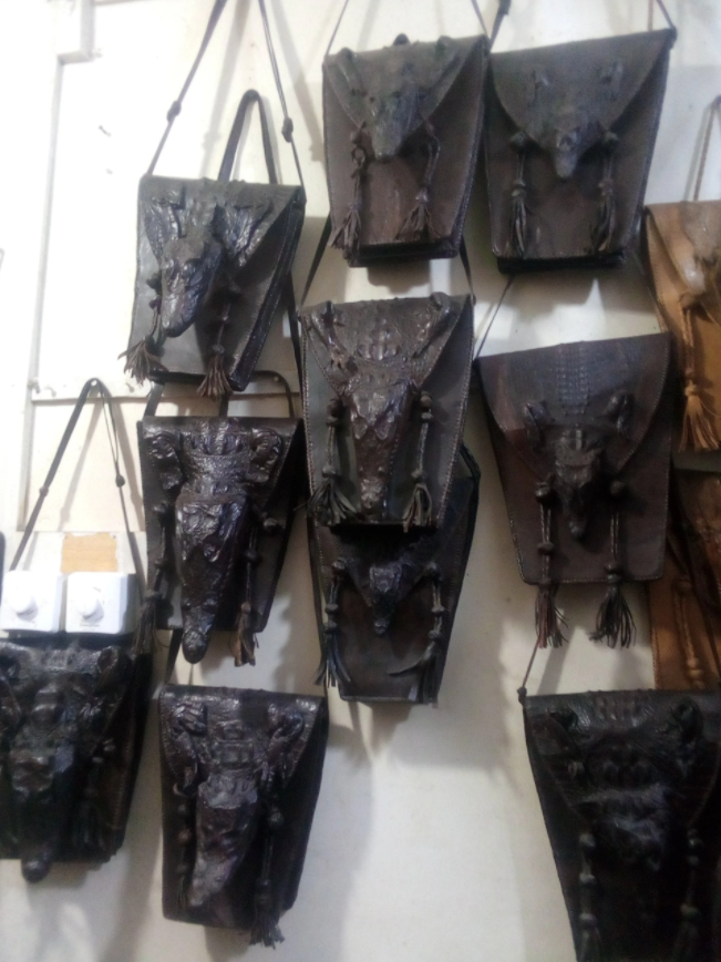 Crocodile Skin: Conservation Through Utilization of An Ancient Species