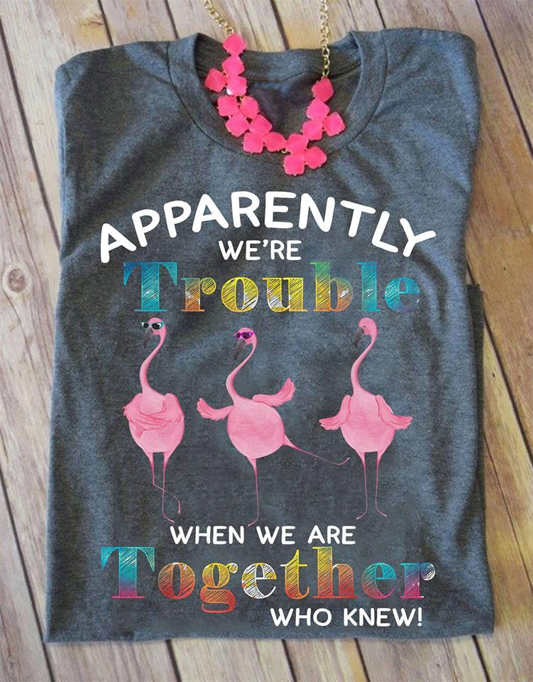 Flamingo We're Trouble When We Are Together T-SHIRT