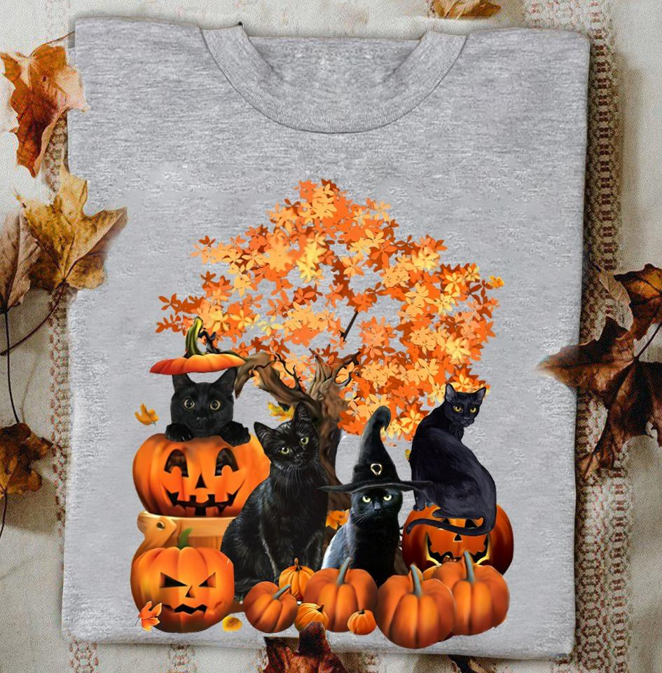Black Cats Pumpkin Fall Witch Halloween