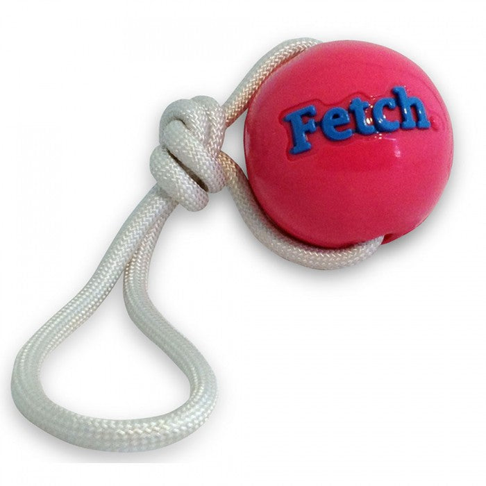 Planet Dog Pelota Fetch Con Lazo Fucsia