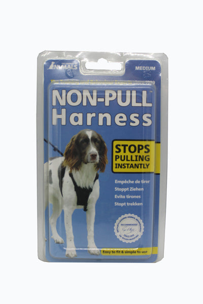 Non Pull Harness Medium- Clínica veterinaria