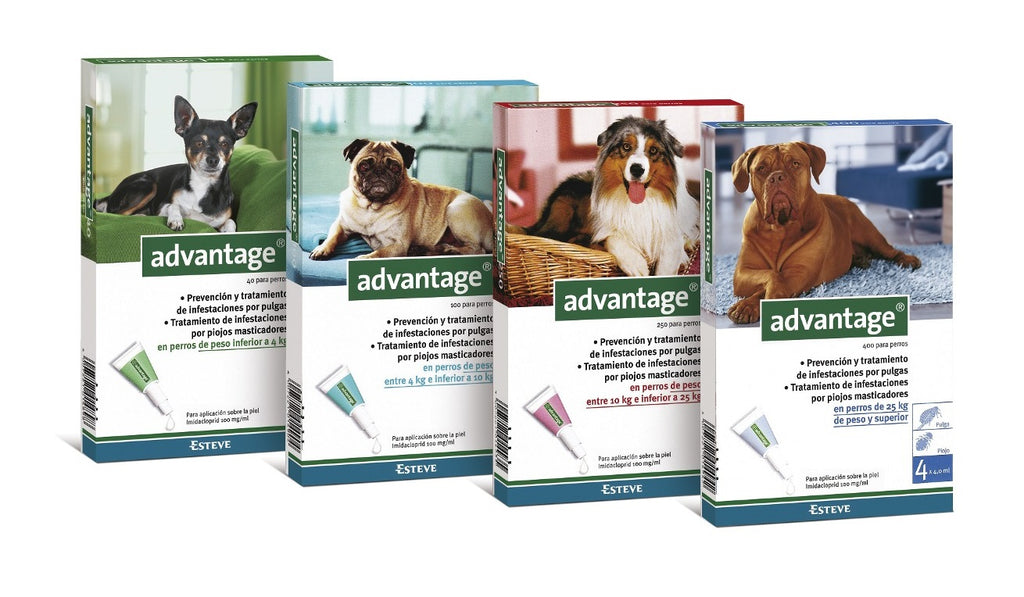 Advantage Perros- Clínica veterinaria