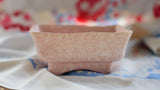 Mottled Pink Rectangular Mini Planter