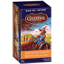 Load image into Gallery viewer, Celestial Teas Sweet Harvest Pumpkin