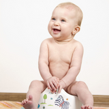 potty-training-equipment-baby-toilet-chair