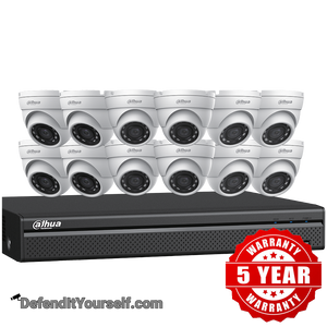 Dahua (12) 4 MP Eyeball IP Security Cameras with 16-channel 4K NVR Kit w/ 4TB HDD N5164E124 - DefendItYourself.com Kit