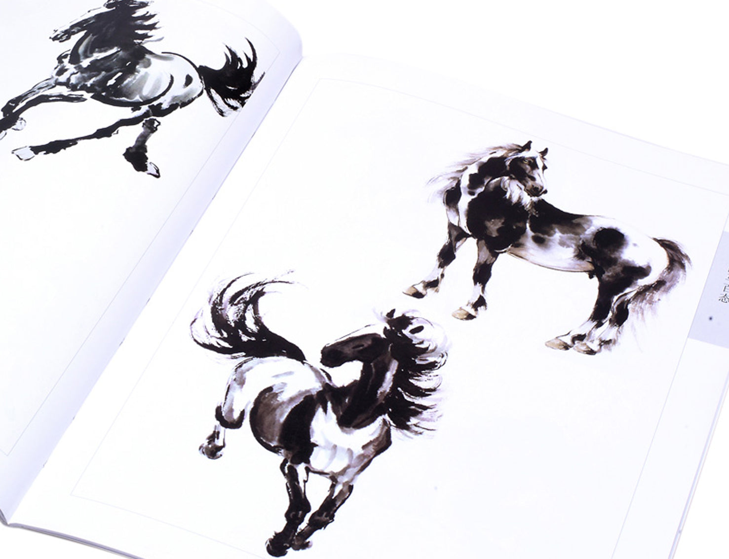 Sumi E Teaching And Practice Book For Chinese Horse Paintings Asian Brushpainter