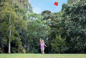 Child running with kite