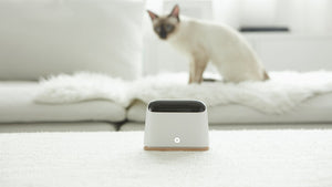 Ambi Climate 2:A.I. Enhanced Air Conditioning Comfort (on Flash Sale NOW!) - anlander.com | English