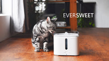 Load image into Gallery viewer, PETKIT EVERSWEET Smart Drinking Fountain for Pets ( 2nd Generation ) - anlander.com | English