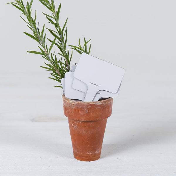 small plant marker stick