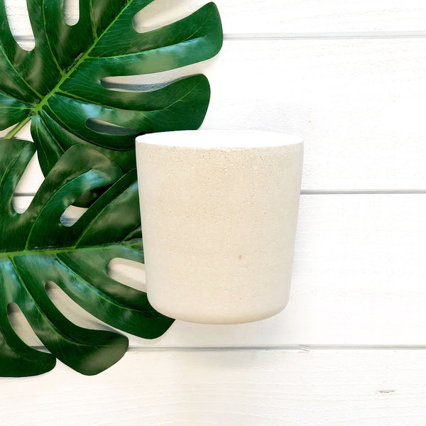 rosemary scented botanica candle in concrete reusable planter