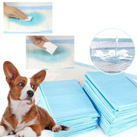 Absorbent Pee Pads, 100 count - thediggitydogstore.com