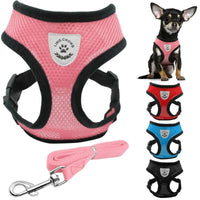 Breathable Nylon Harness With Matching Leash S,M,L - thediggitydogstore.com