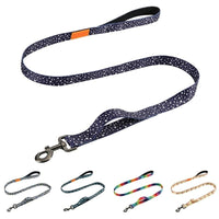 Colorful Canvas Dog Lead. Reflective And Double Thick! - thediggitydogstore.com