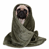 Cozy & Snuggly Dog Blanket. Soft & Warm - thediggitydogstore.com