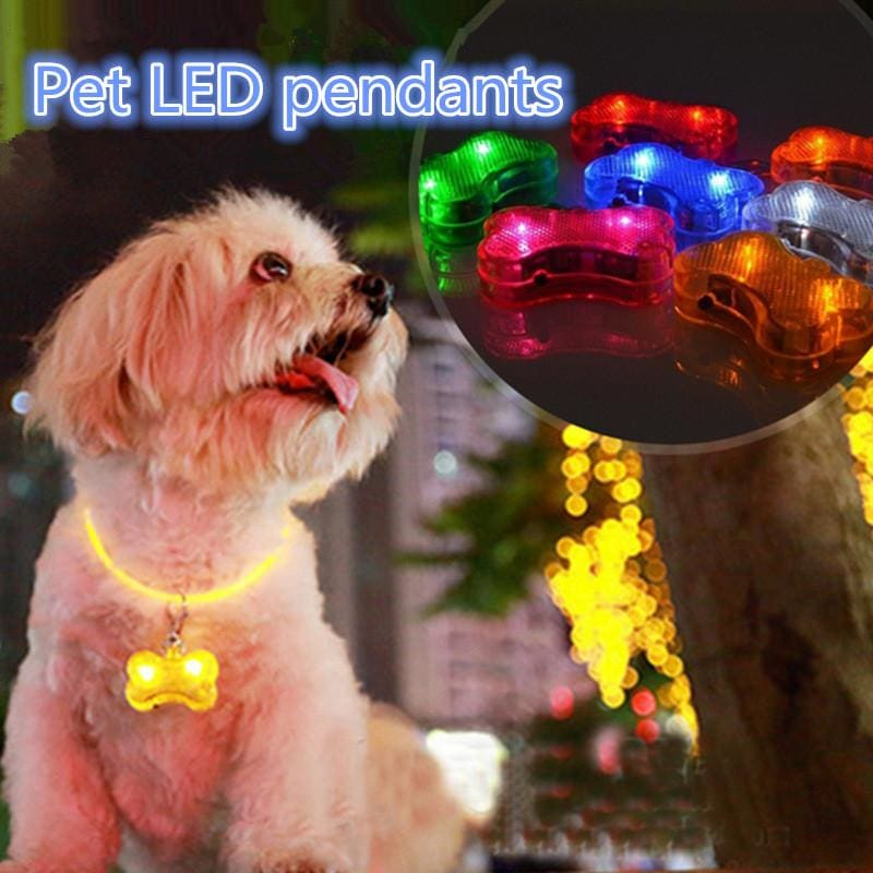 Dog LED ID Tags That Glow & Flash - thediggitydogstore.com