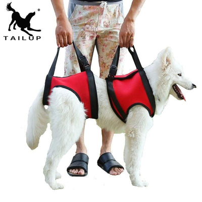 Dog lifts. Support Vest Harness & Back Brace With Handles To Help Lift - thediggitydogstore.com