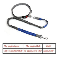 Dog Running Leash Hands Free! - thediggitydogstore.com