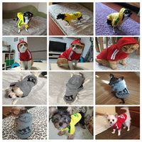 Dog Sweatshirt Hoodie Grey, Yellow, Black, Red - thediggitydogstore.com