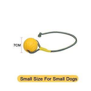 Dog Toys Ball with Rope/Flying Discs/Chew - thediggitydogstore.com