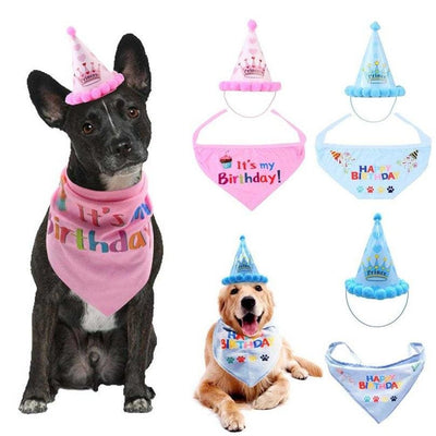 Dogs Birthday Hat & Scarf So Cute! - thediggitydogstore.com