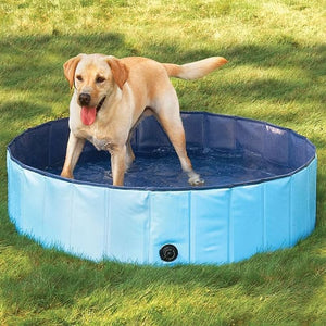 Foldable Dog Swimming Pool - thediggitydogstore.com