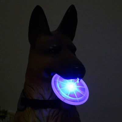 Light UP Bite Resistant Flying Disk.  Great For Nighttime Play! Lots Of Fun Colors! - thediggitydogstore.com