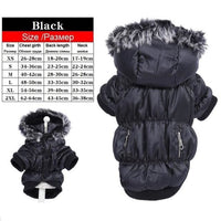 Luxury Winter Dog Coats Warm And For Royal Dogs, Gorgeous! - thediggitydogstore.com